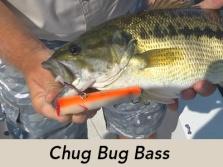 chug-bug-bass-icon