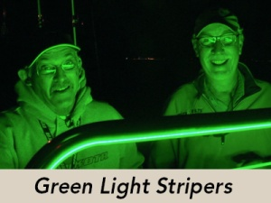 green-light-striper-icon