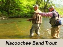 nacoochee-bend-trout-tv