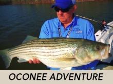 oconee-adventure