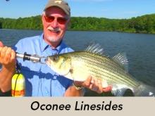 oconee_linesides_icon