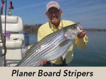 planer-board-stripers-header
