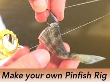 Pro-Tip-Pinfish-Rig