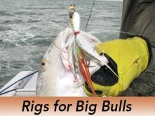 Pro-Tip-Redfish-Rigs