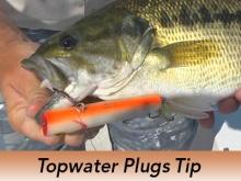 pro-tip-topwater-plugs