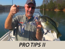 pro-tips-ii-header