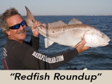 redfish-roundup