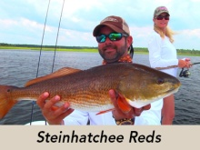 steinhatchee-reds-icon