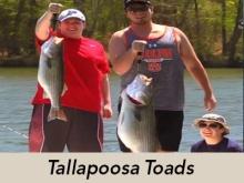 tallapoosa-toads-header